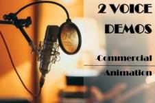 VOICE DEMO 2D
